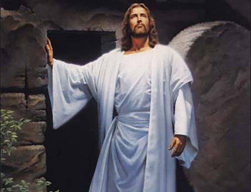 ALLELUJA! JEZUS ŻYJE !